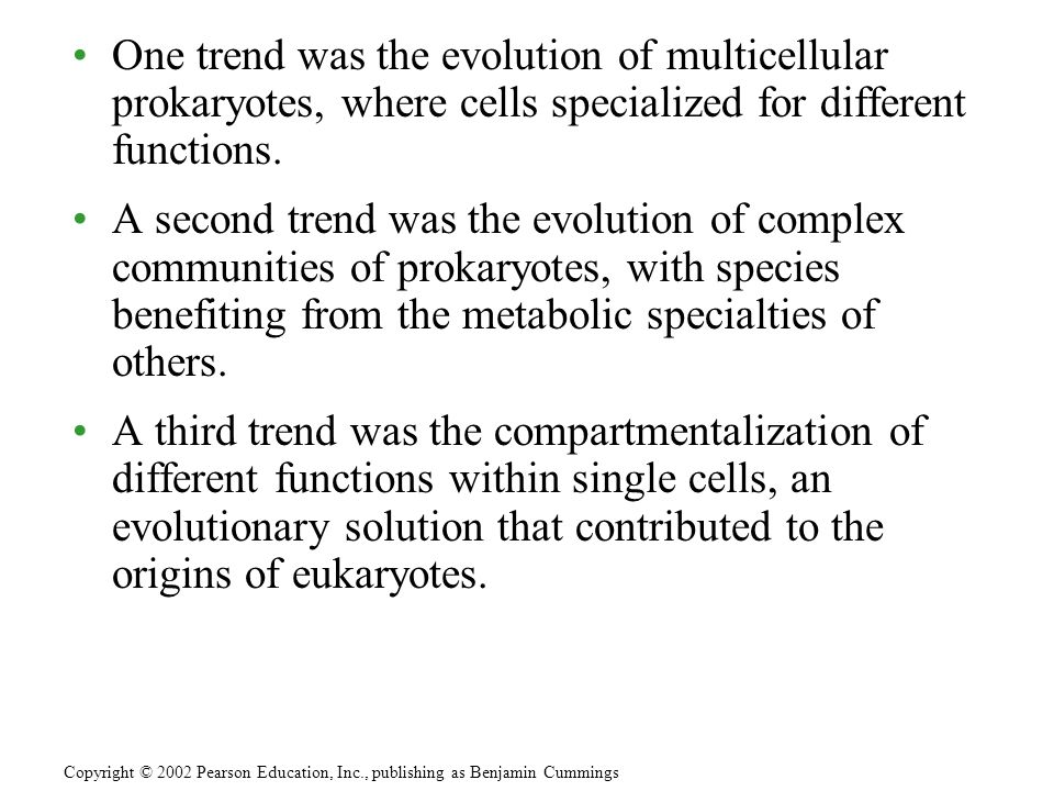 One trend was the evolution of multicellular prokaryotes, where cells specialized for different functions. A second trend was the evolution of complex