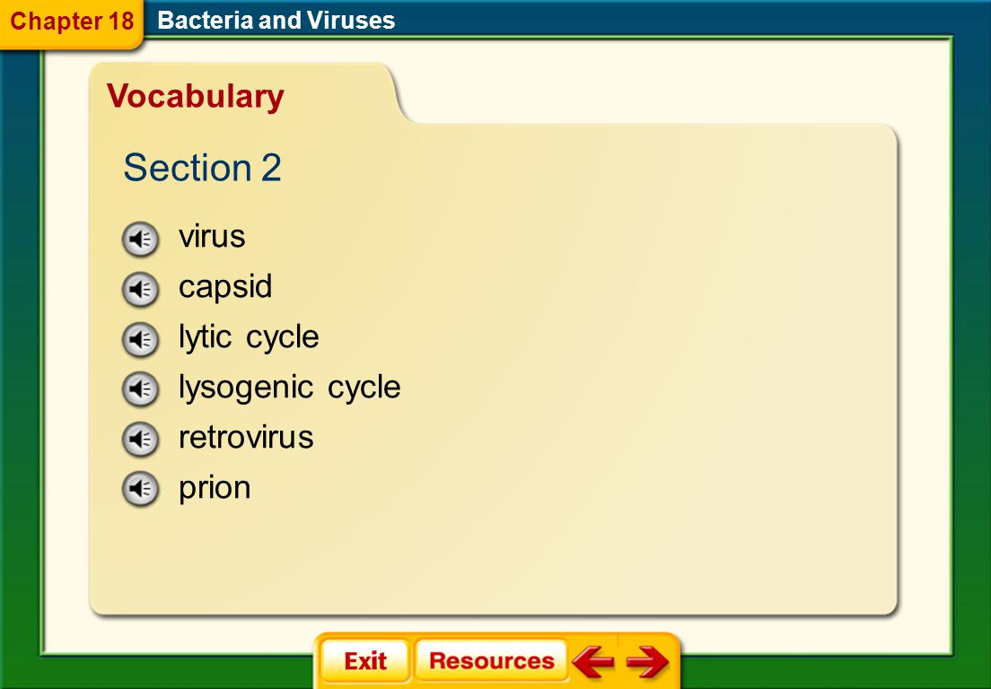 bacteria nucleoid capsule pilus binary fission conjugation endospore Bacteria and Viruses Vocabulary Section 1 Chapter 18