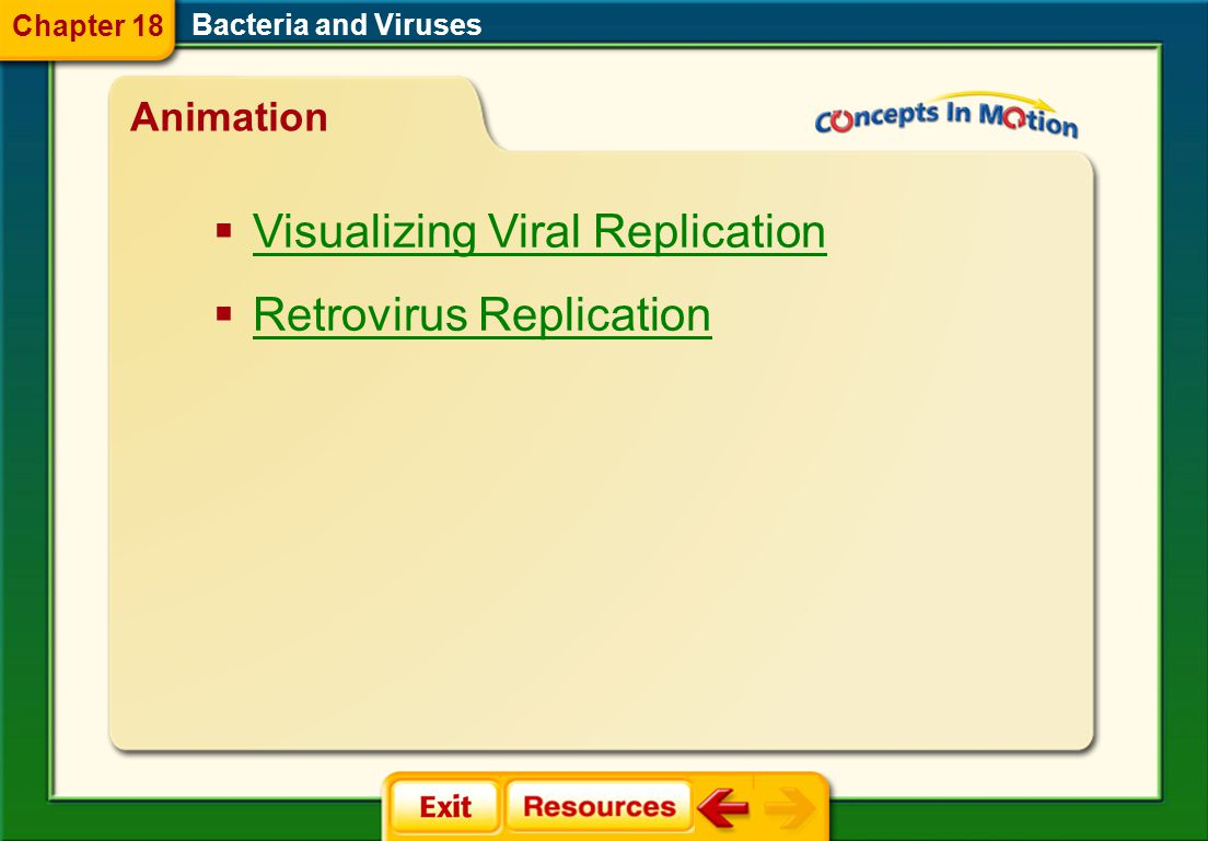 virus capsid lytic cycle lysogenic cycle retrovirus prion Bacteria and Viruses Vocabulary Section 2 Chapter 18