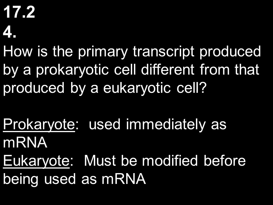 17.2 4. How is the primary transcript produced by a prokaryotic cell different from that produced by a eukaryotic cell? Prokaryote: used immediately a