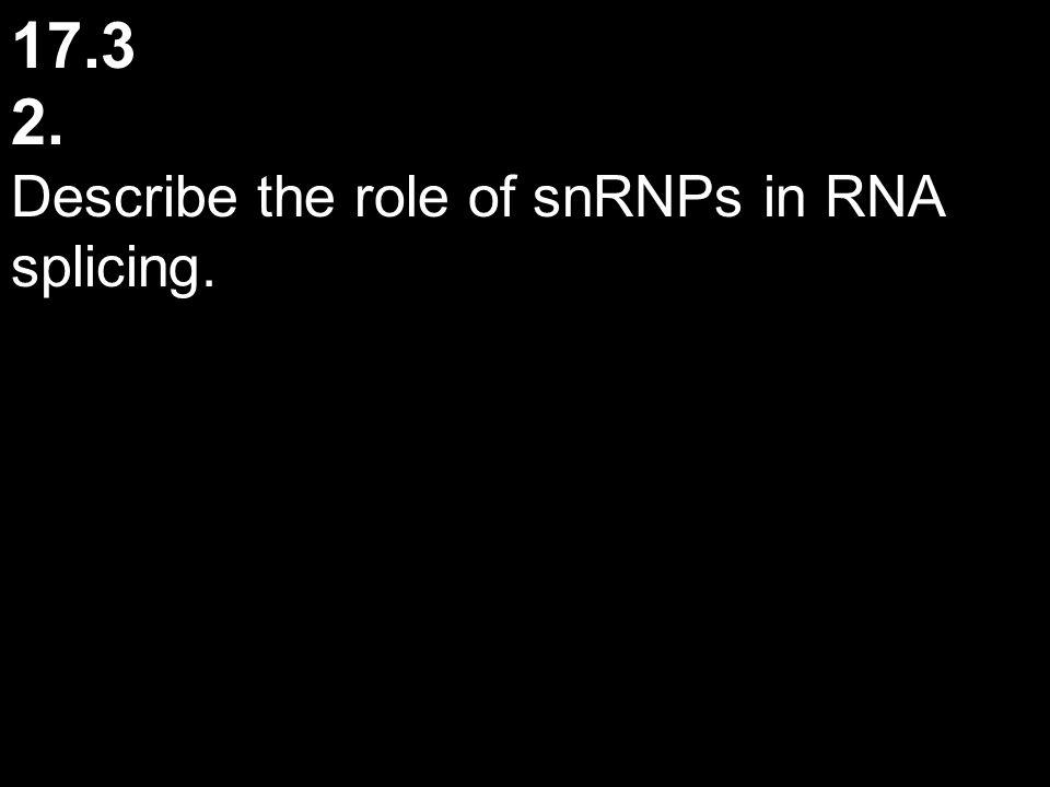 17.3 2. Describe the role of snRNPs in RNA splicing.