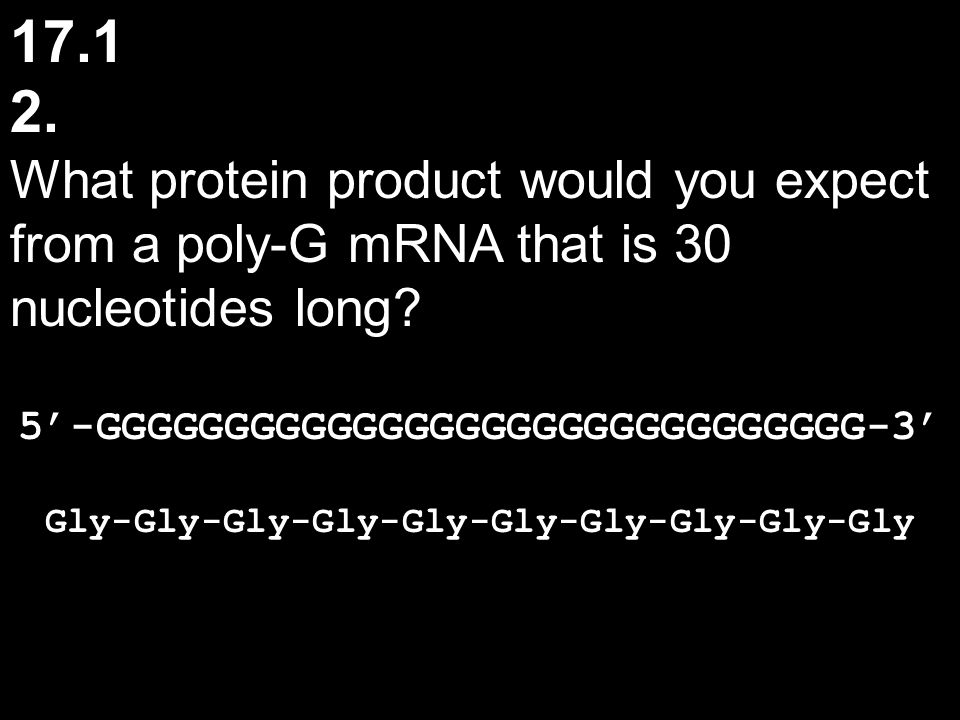 17.1 2. What protein product would you expect from a poly-G mRNA that is 30 nucleotides long? 5'-GGGGGGGGGGGGGGGGGGGGGGGGGGGGGG-3' Gly-Gly-Gly-Gly-Gly