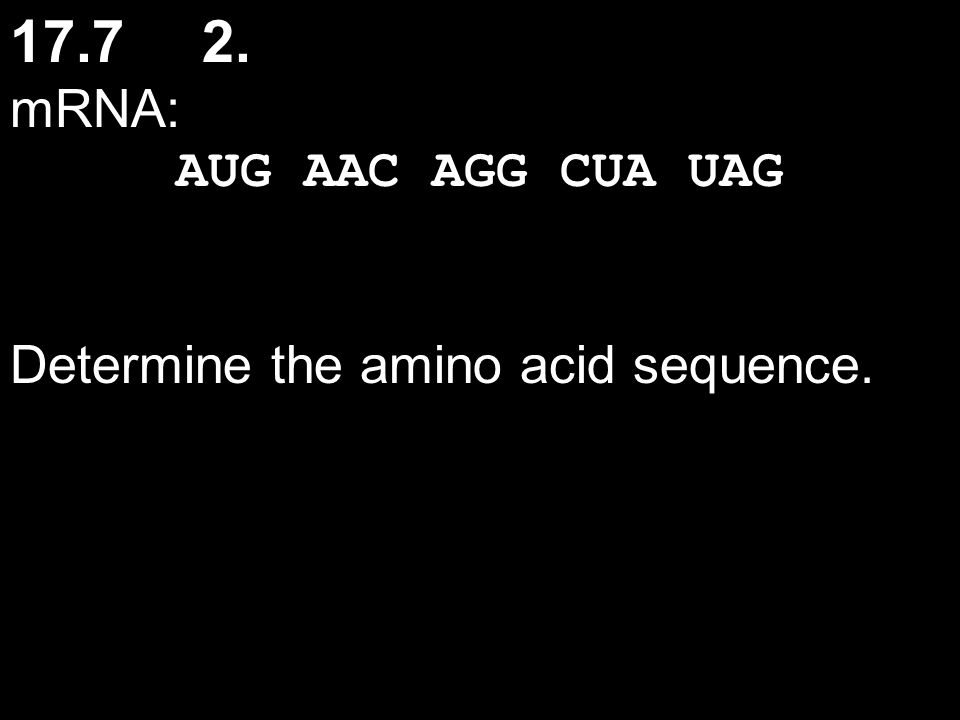 17.72. mRNA: AUG AAC AGG CUA UAG Determine the amino acid sequence.