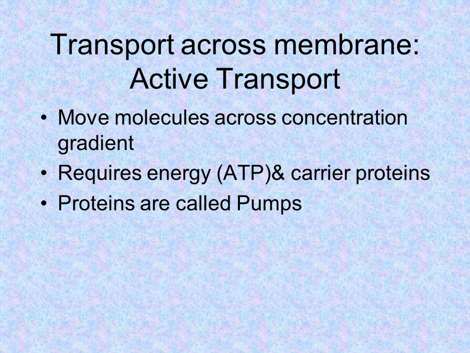 Transport across membrane: Active Transport Move molecules across concentration gradient Requires energy (ATP)& carrier proteins Proteins are called Pumps