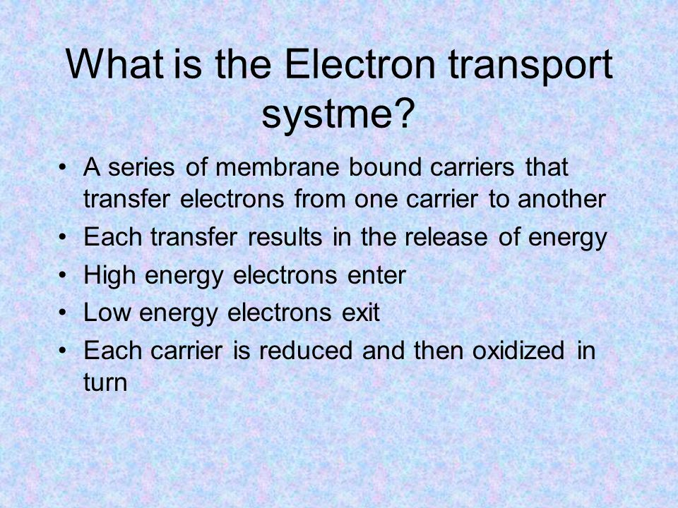 What is the Electron transport systme.