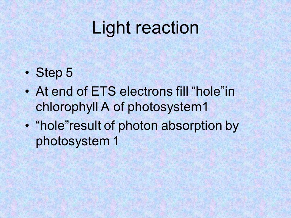 Light reaction Step 5 At end of ETS electrons fill hole in chlorophyll A of photosystem1 hole result of photon absorption by photosystem 1