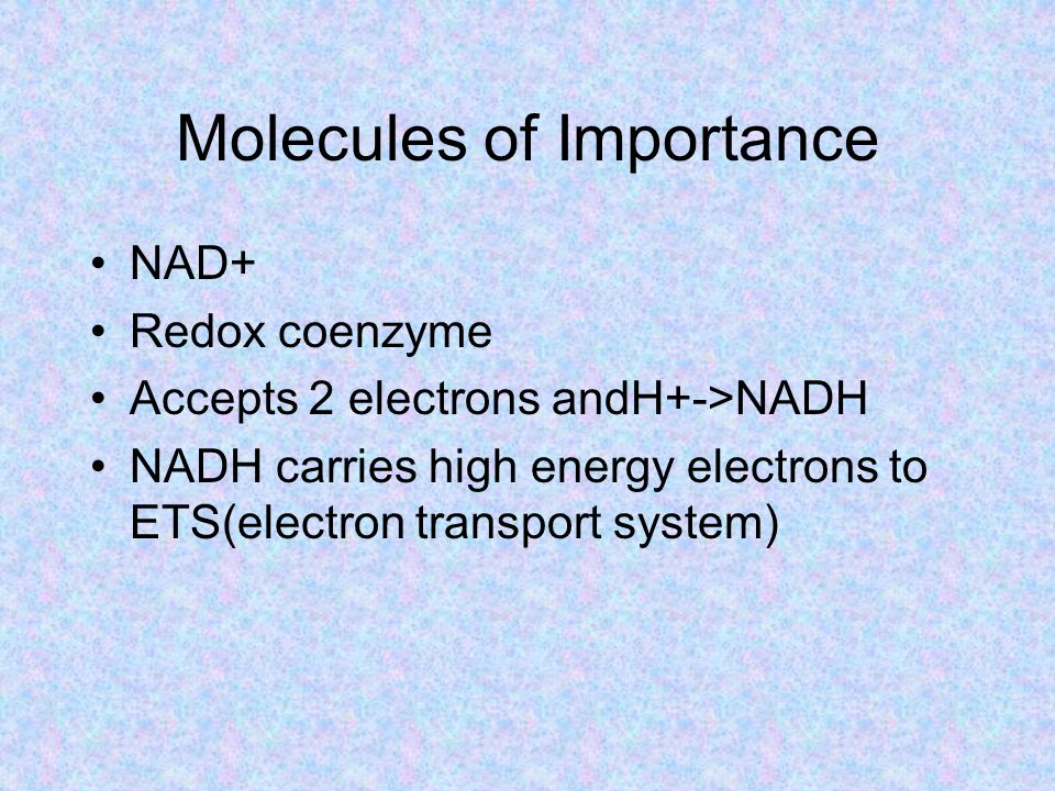 Molecules of Importance NAD+ Redox coenzyme Accepts 2 electrons andH+->NADH NADH carries high energy electrons to ETS(electron transport system)
