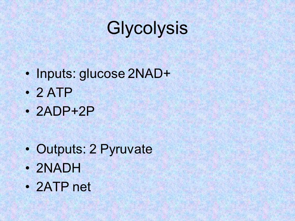 Glycolysis Inputs: glucose 2NAD+ 2 ATP 2ADP+2P Outputs: 2 Pyruvate 2NADH 2ATP net