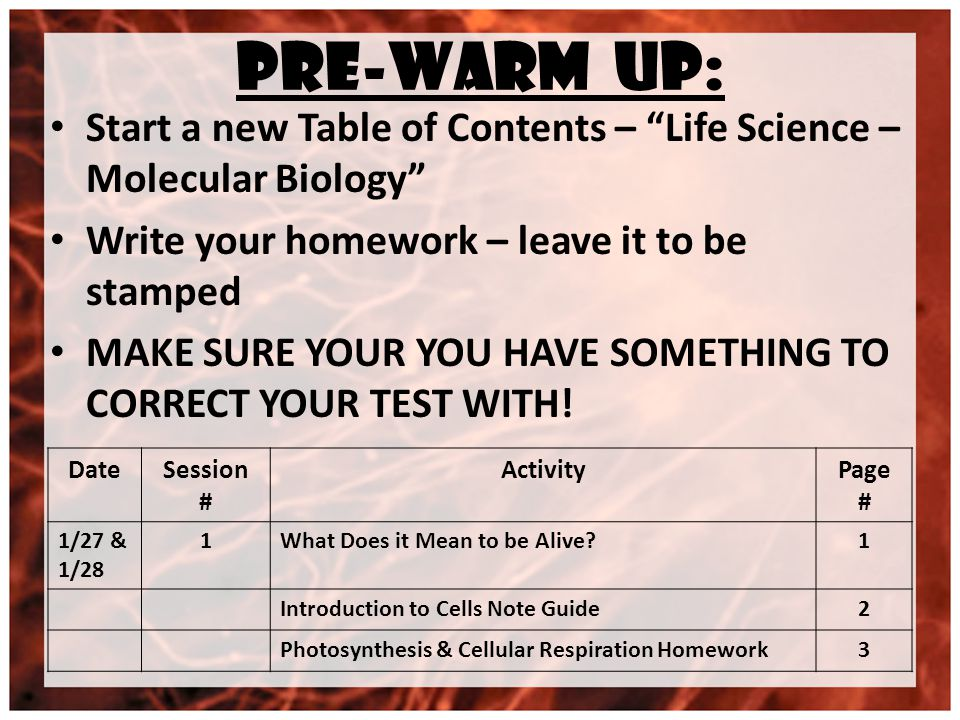 PRE-WARM UP: Start a new Table of Contents – Life Science – Molecular Biology Write your homework – leave it to be stamped MAKE SURE YOUR YOU HAVE SOMETHING TO CORRECT YOUR TEST WITH.