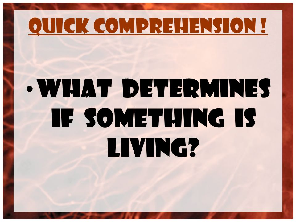 Quick Comprehension ! What determines if something is living?