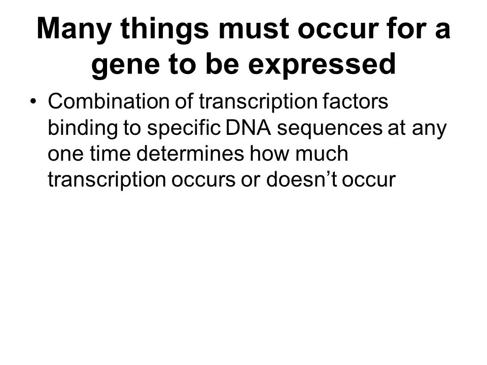 Many things must occur for a gene to be expressed Combination of transcription factors binding to specific DNA sequences at any one time determines how much transcription occurs or doesn't occur