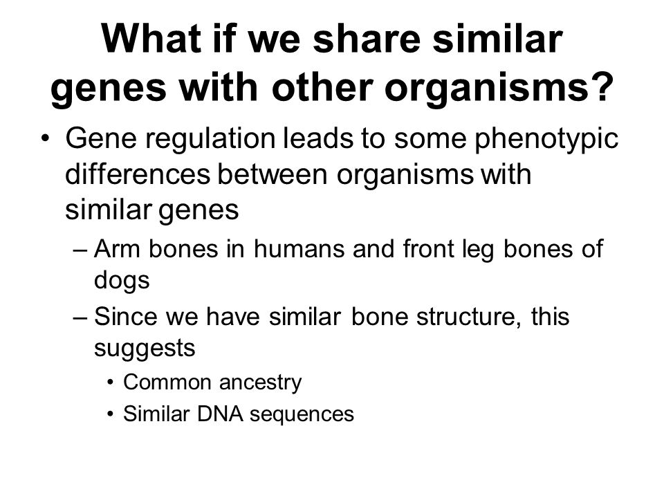 What if we share similar genes with other organisms.
