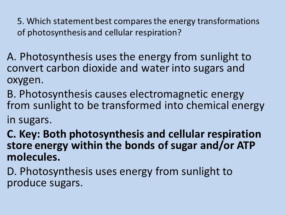 5. Which statement best compares the energy transformations of photosynthesis and cellular respiration? A. Photosynthesis uses the energy from sunligh