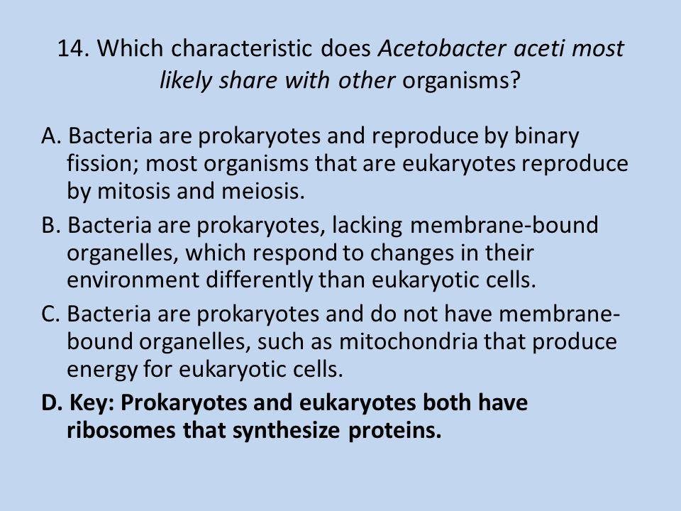 14. Which characteristic does Acetobacter aceti most likely share with other organisms? A. Bacteria are prokaryotes and reproduce by binary fission; m