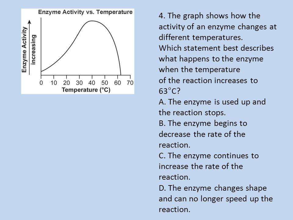4. The graph shows how the activity of an enzyme changes at different temperatures. Which statement best describes what happens to the enzyme when the