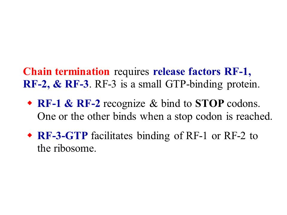 Chain termination requires release factors RF-1, RF-2, & RF-3.