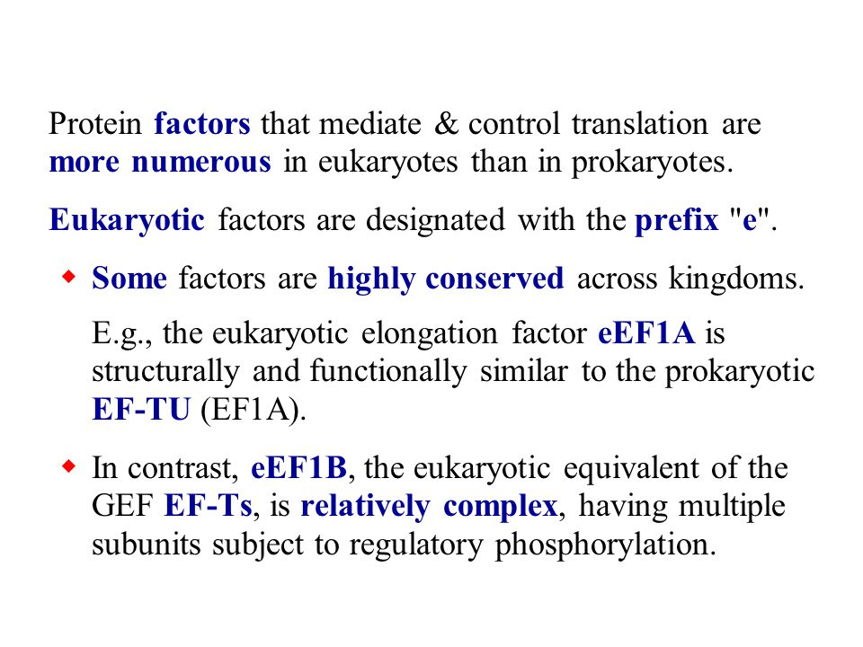 Protein factors that mediate & control translation are more numerous in eukaryotes than in prokaryotes.