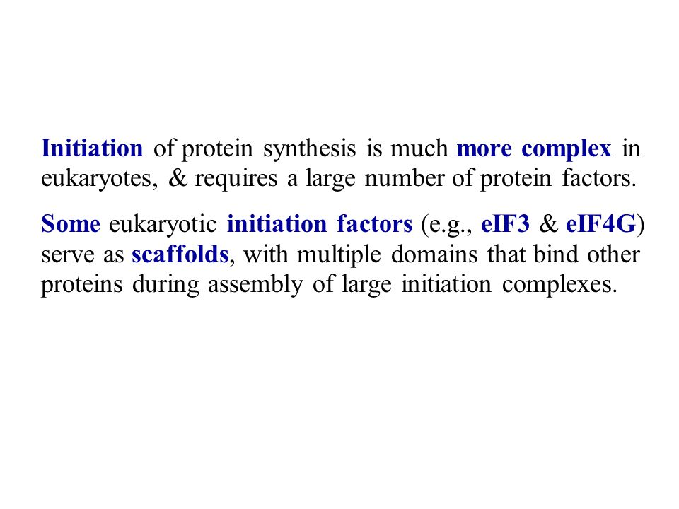 Initiation of protein synthesis is much more complex in eukaryotes, & requires a large number of protein factors.