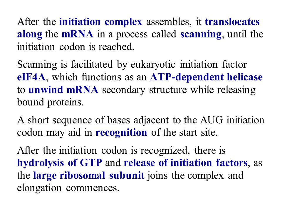 After the initiation complex assembles, it translocates along the mRNA in a process called scanning, until the initiation codon is reached.