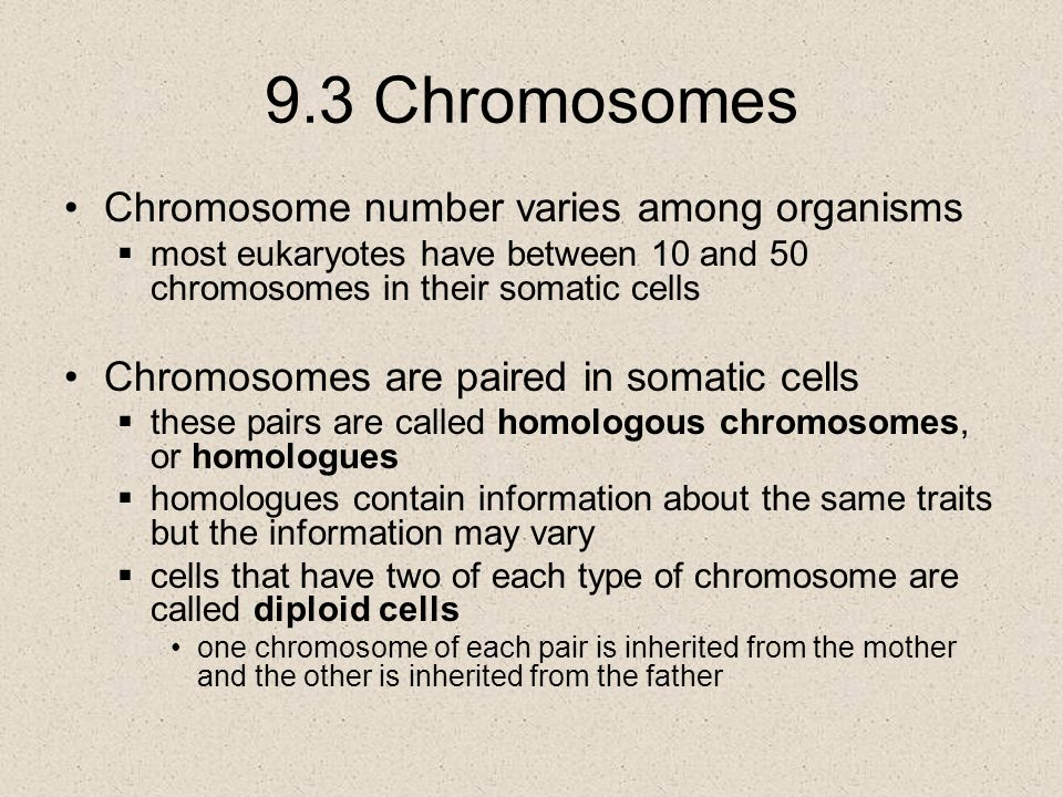 9.3 Chromosomes Chromosome number varies among organisms  most eukaryotes have between 10 and 50 chromosomes in their somatic cells Chromosomes are p