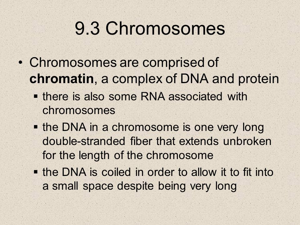 9.3 Chromosomes Chromosomes are comprised of chromatin, a complex of DNA and protein  there is also some RNA associated with chromosomes  the DNA in