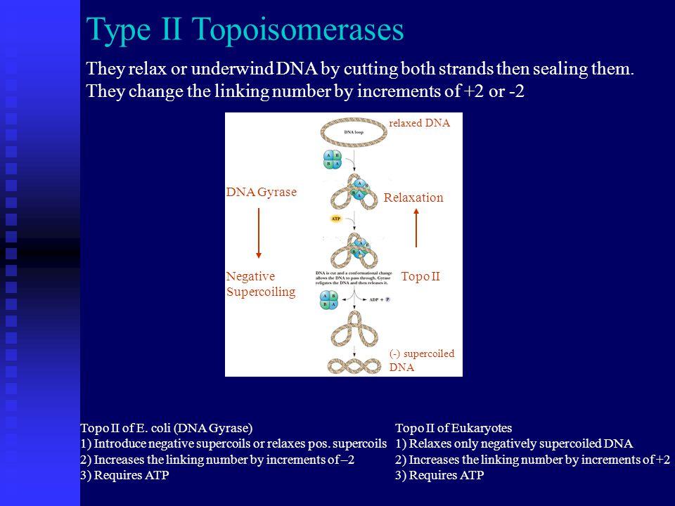 Type II mechanism Cleavable Complex