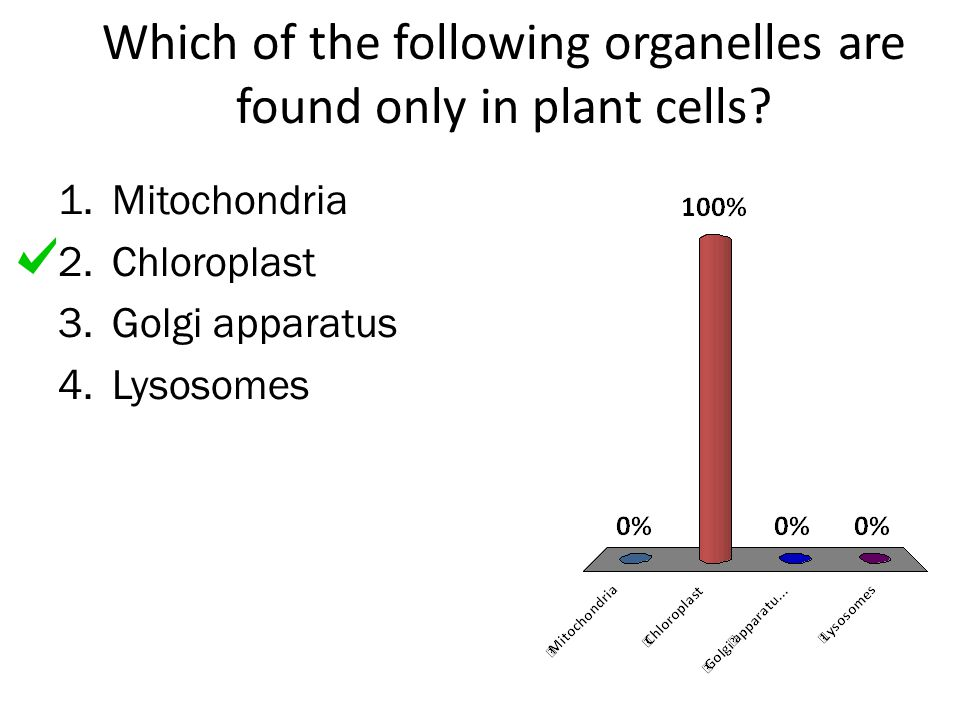 Which of the following organelles are found only in plant cells? 1.Mitochondria 2.Chloroplast 3.Golgi apparatus 4.Lysosomes