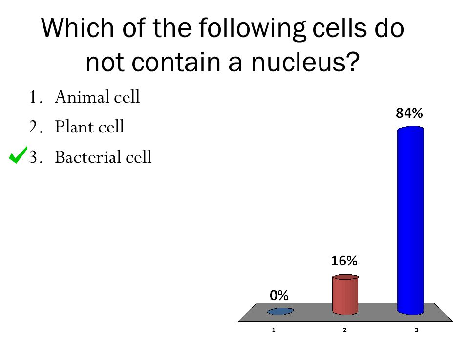 Which of the following cells do not contain a nucleus? 1.Animal cell 2.Plant cell 3.Bacterial cell