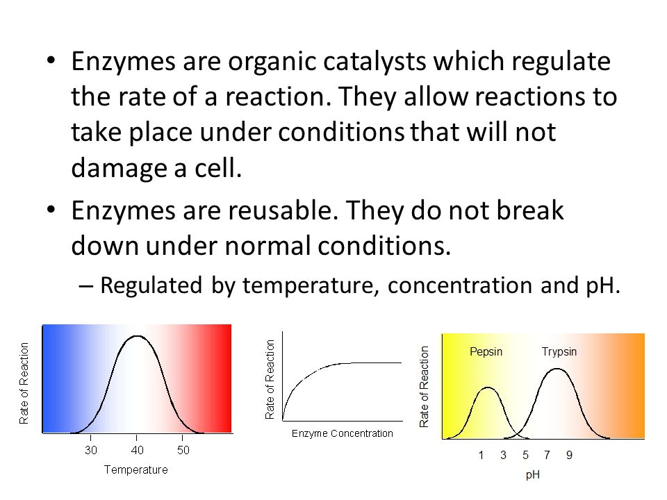 Enzymes are organic catalysts which regulate the rate of a reaction. They allow reactions to take place under conditions that will not damage a cell.