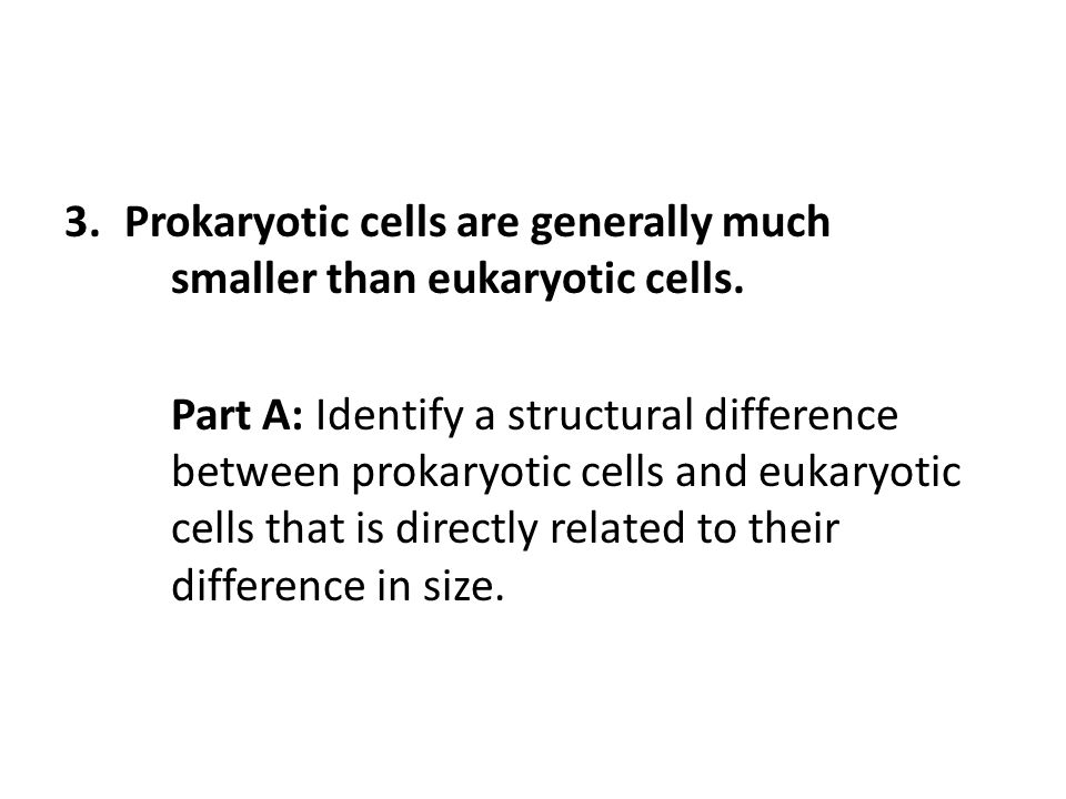 3.Prokaryotic cells are generally much smaller than eukaryotic cells. Part A: Identify a structural difference between prokaryotic cells and eukaryoti