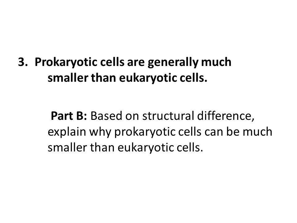 3.Prokaryotic cells are generally much smaller than eukaryotic cells. Part B: Based on structural difference, explain why prokaryotic cells can be muc