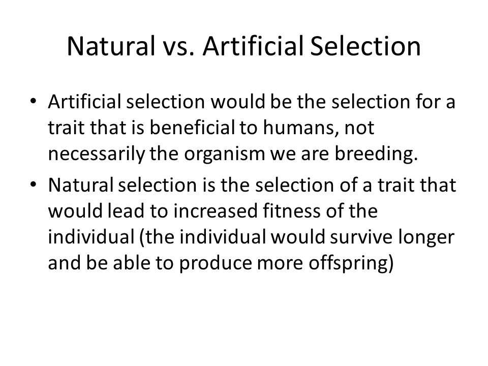 Natural vs. Artificial Selection Artificial selection would be the selection for a trait that is beneficial to humans, not necessarily the organism we