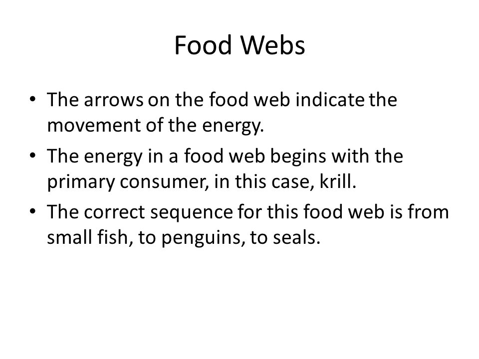 Food Webs The arrows on the food web indicate the movement of the energy. The energy in a food web begins with the primary consumer, in this case, kri