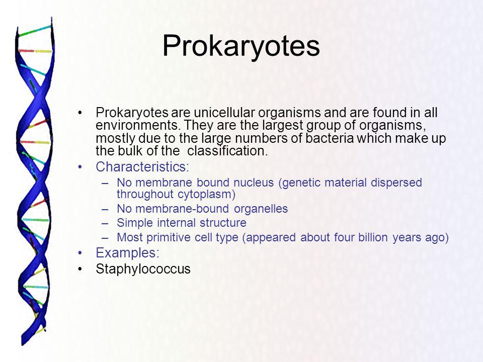 Eukaryotes Eukaryotes, in general, are more advanced than prokaryotes.