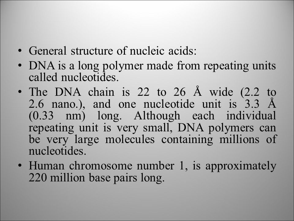 General structure of nucleic acids: DNA is a long polymer made from repeating units called nucleotides.