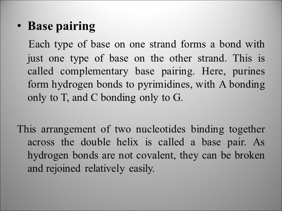 Base pairing Each type of base on one strand forms a bond with just one type of base on the other strand.