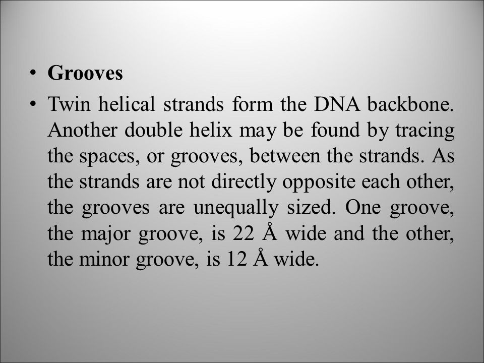Grooves Twin helical strands form the DNA backbone.
