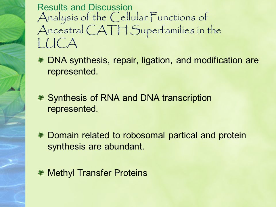 Analysis of the Cellular Functions of Ancestral CATH Superfamilies in the LUCA Results and Discussion DNA synthesis, repair, ligation, and modificatio