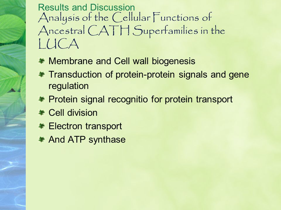 Analysis of the Cellular Functions of Ancestral CATH Superfamilies in the LUCA Results and Discussion Membrane and Cell wall biogenesis Transduction o
