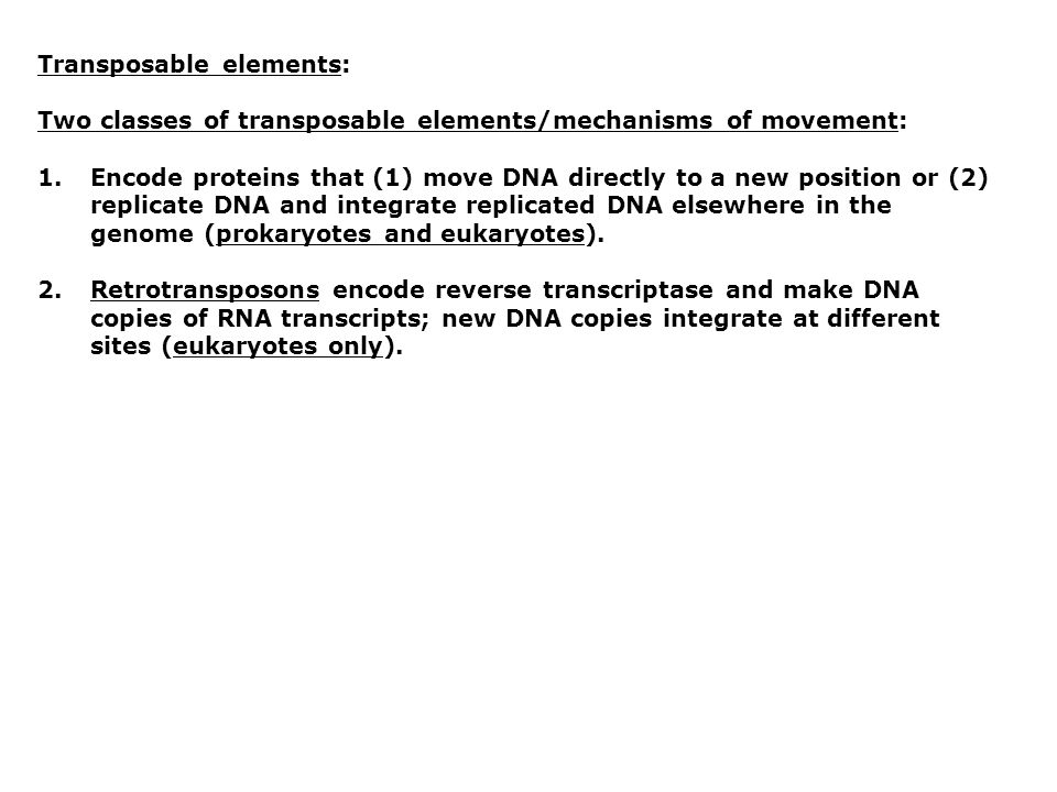 Transposable elements: Two classes of transposable elements/mechanisms of movement: 1.Encode proteins that (1) move DNA directly to a new position or (2) replicate DNA and integrate replicated DNA elsewhere in the genome (prokaryotes and eukaryotes).
