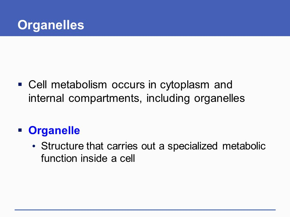 Organelles  Cell metabolism occurs in cytoplasm and internal compartments, including organelles  Organelle Structure that carries out a specialized