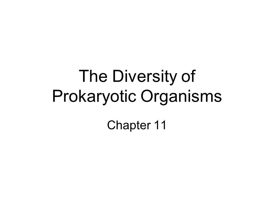 The Diversity of Prokaryotic Organisms Chapter 11