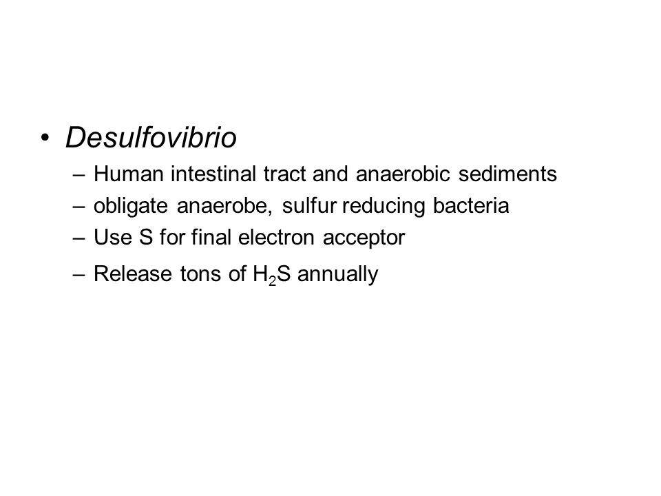 Desulfovibrio –Human intestinal tract and anaerobic sediments –obligate anaerobe, sulfur reducing bacteria –Use S for final electron acceptor –Release