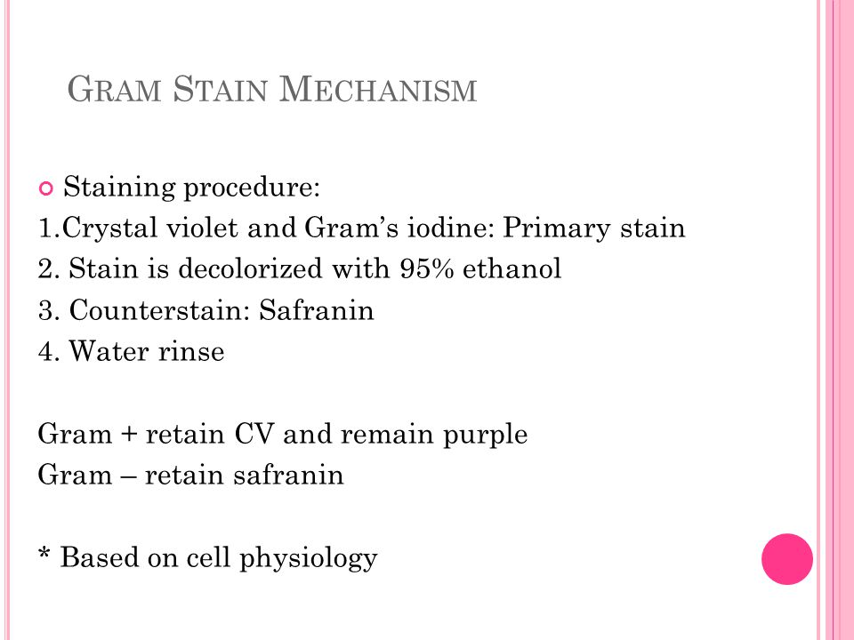 Staining procedure: 1.Crystal violet and Gram's iodine: Primary stain 2. Stain is decolorized with 95% ethanol 3. Counterstain: Safranin 4. Water rins