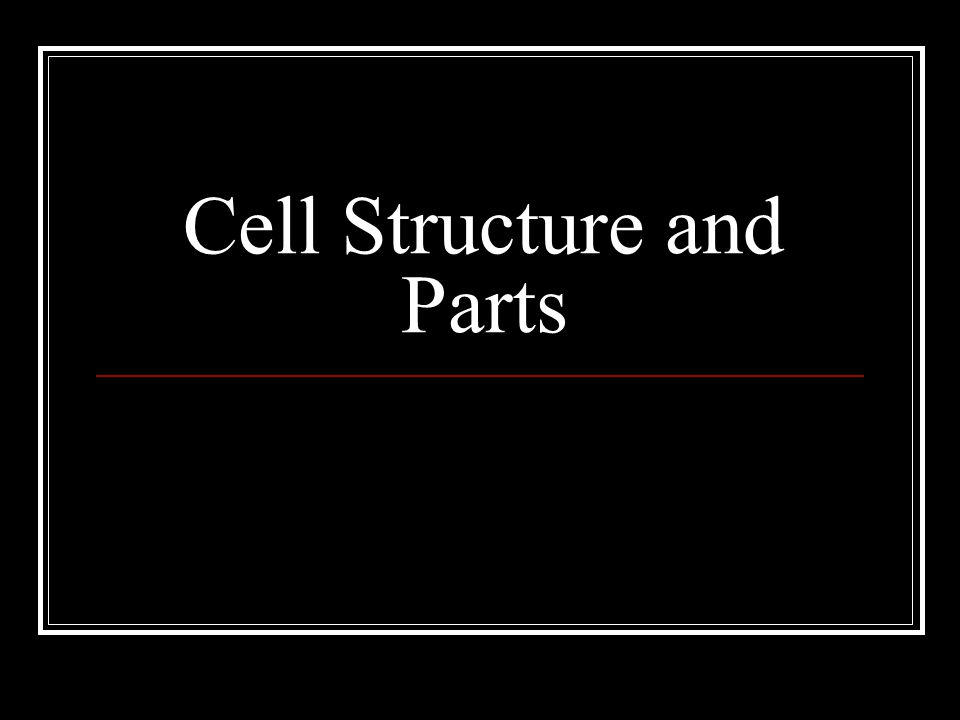 Cell Structure and Parts