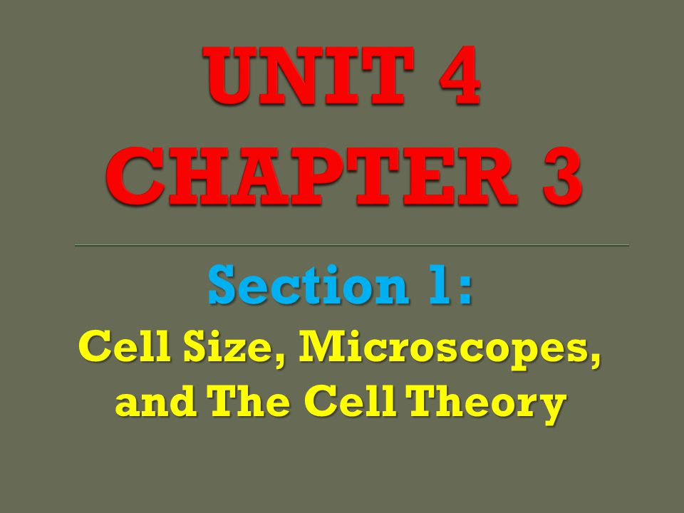 Section 1: Cell Size, Microscopes, and The Cell Theory