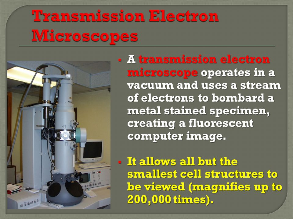  A transmission electron microscope operates in a vacuum and uses a stream of electrons to bombard a metal stained specimen, creating a fluorescent computer image.
