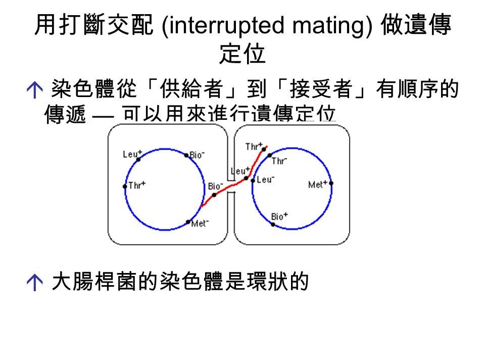  染色體從「供給者」到「接受者」有順序的 傳遞 — 可以用來進行遺傳定位  大腸桿菌的染色體是環狀的 用打斷交配 (interrupted mating) 做遺傳 定位