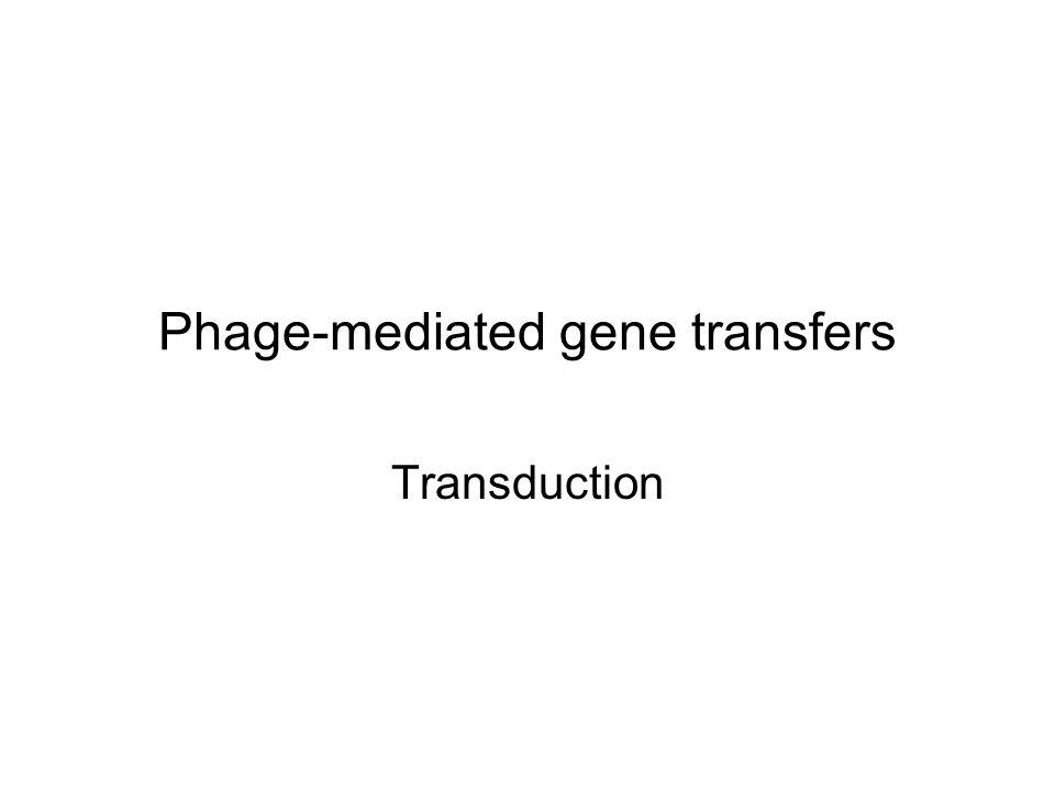 Phage-mediated gene transfers Transduction
