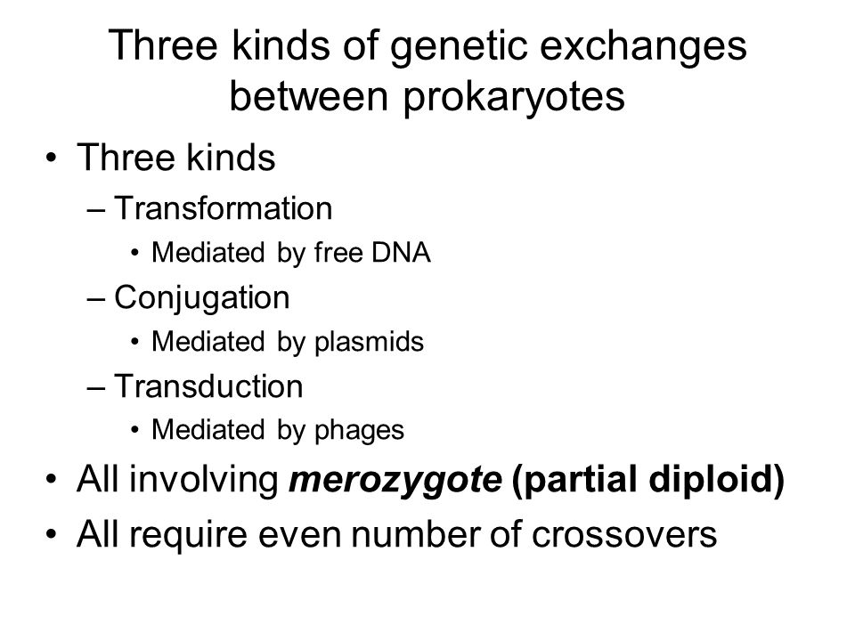 Three kinds of genetic exchanges between prokaryotes Three kinds –Transformation Mediated by free DNA –Conjugation Mediated by plasmids –Transduction Mediated by phages All involving merozygote (partial diploid) All require even number of crossovers